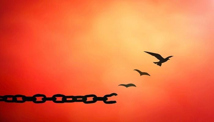 Как научиться прощать обиды. Шаги к прощению Советы психолога