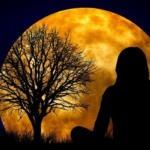 2 варианта медитации прощения обид