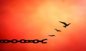 10 шагов к прощению и очищению своего сердца