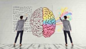 Сознание в холодинамике: модель разума