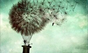 Самообман: улучшают ли реальность наши иллюзии?